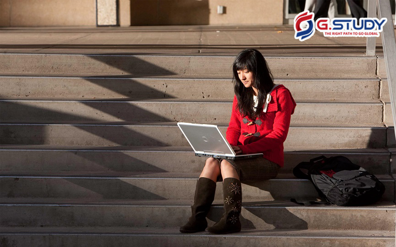 cô gái ngồi làm việc với laptop