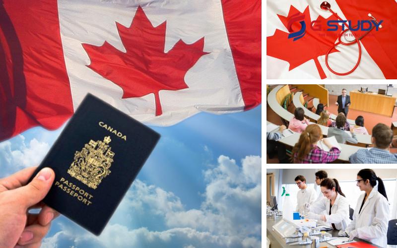 Chính phủ Canada tạo nhiều quyền lợi cho sinh viên được học bổng Cao đẳng – Đại học