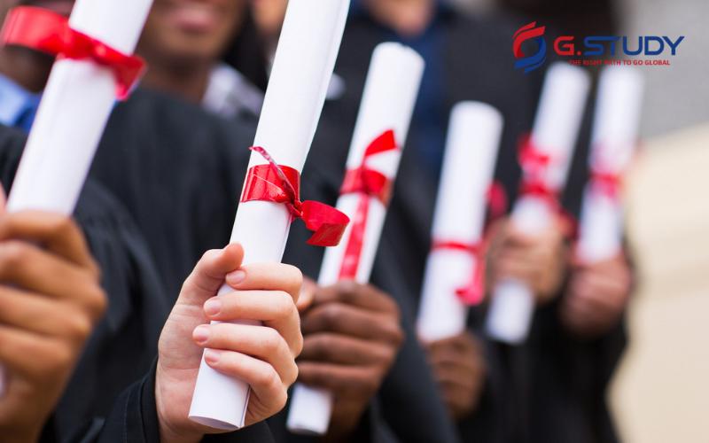 Bạn có thể tìm thông tin học bổng qua website trường hoặc công ty tư vấn du học
