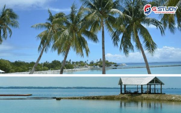 Khung cảnh hồ nước, cây cối tại Cebu