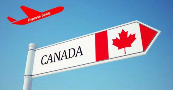 Cơ hội du học tại Canada với nhiều hình thức khác nhau